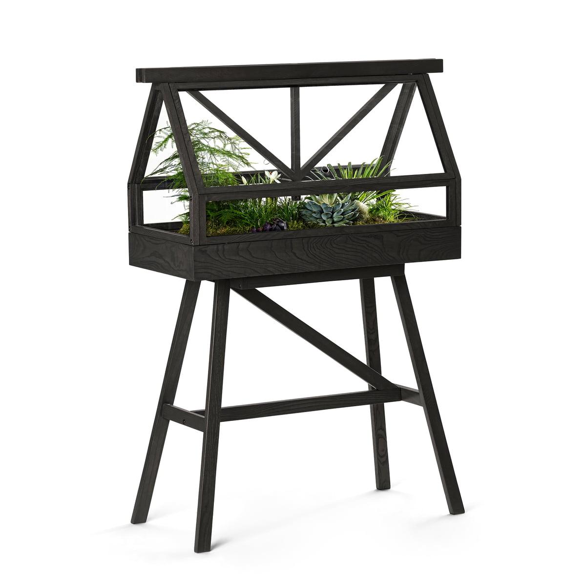 Greenhouse von design house stockholm for Design von zierpflanzen